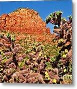 Flowering Desert Cactus Framing Red Rock Cliffs Metal Print