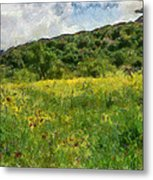 Flowering Fields Metal Print