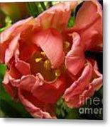 Floweron Metal Print