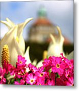 Flowers - Botanical Garden Munich Metal Print