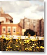 Flowers - High Line Park - New York City Metal Print