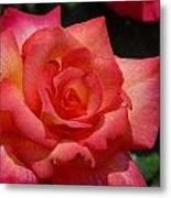 Flowers 294 Metal Print