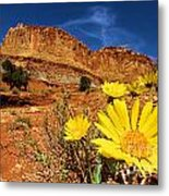 Flowers And Buttes Metal Print