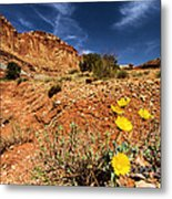 Flowers And Canyons Metal Print