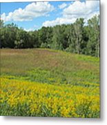 Flowers And Grass Two Metal Print