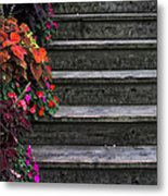 Flowers And Steps Metal Print