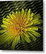Flowers Are Weeds With Respect Metal Print