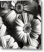 Flowers In Sepia Tone Metal Print