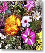 Flowers In Stephanie's Garden Metal Print