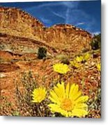 Flowers In The Capitol Metal Print