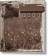 Flowers In The Field Metal Print