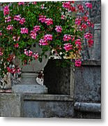Flowers On The Steps Metal Print