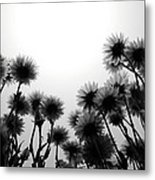 Flowers Standing Tall Metal Print
