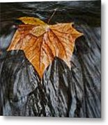 Flowing Leaf Metal Print