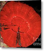 Fluorescent Coral In White Light Metal Print
