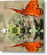 Fluttering Reflections - Butterfly Metal Print