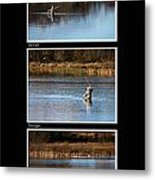 Fly Fishing Triptych Black Background Metal Print