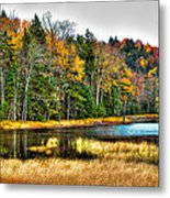 Fly Pond On Rondaxe Road II Metal Print