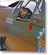 Flying Tigers 02 Metal Print by Jeff Stallard