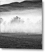 Fog In The Cove Metal Print