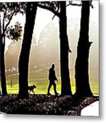 Foggy Day To Walk The Dog Metal Print