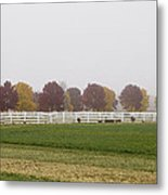 Foggy Fall Metal Print