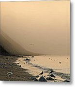 Foggy Shores Metal Print