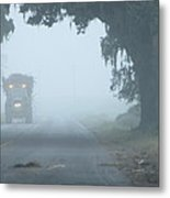 Foggy Sugarcane Morning Metal Print