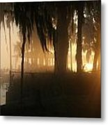 Foggy Sunrise 2 Metal Print