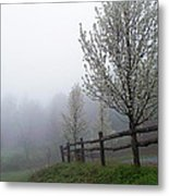 Foggy Trees In The Valley Metal Print