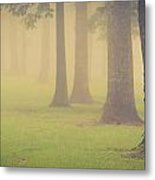 Foggy Trees Pano Metal Print