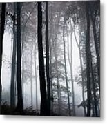 Foggy Woods Ireland Metal Print