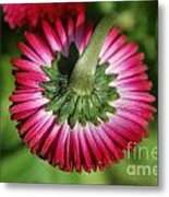 Folded Flower Metal Print