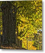 Foliage At The Cemetery Metal Print