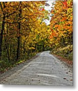 Follow The Yellow Leafed Road Metal Print