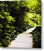 Follow Your Path Metal Print