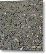 Foot Prints In The Mud Metal Print