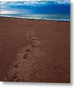 Foot Prints To The Sea Metal Print by Matt Dobson
