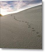 Footprints In Sand  Metal Print