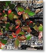 Forest Color Metal Print