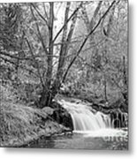 Forest Creek Waterfall In Black And White Metal Print