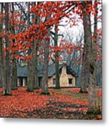 Forest Field House 2 Metal Print