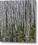 Forest Fire Sticks-2 Metal Print