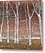Forest Ghosts Metal Print
