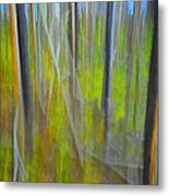 Forest Impression Photographic Image Yellowstone No. 2135. Metal Print