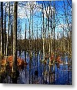 Forest In Colorful Fall Metal Print