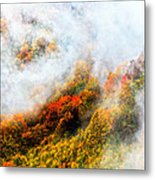 Forest In Veil Of Mists Metal Print