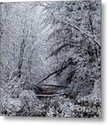 Forest Lace Metal Print