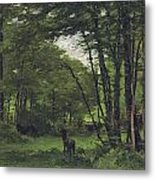 Forest Of Fontainebleau Metal Print