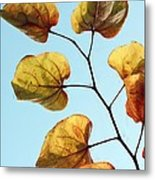 Forest Pansy Autumn Metal Print